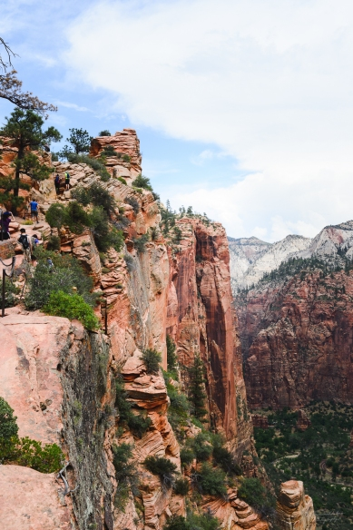 Zion National Park (8 of 12)