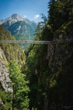 Panorama Bridge above the gorge
