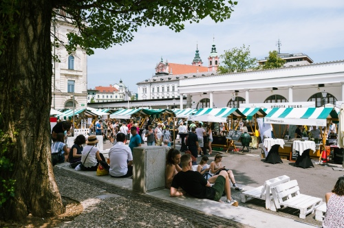 A street food festival at the local market square.